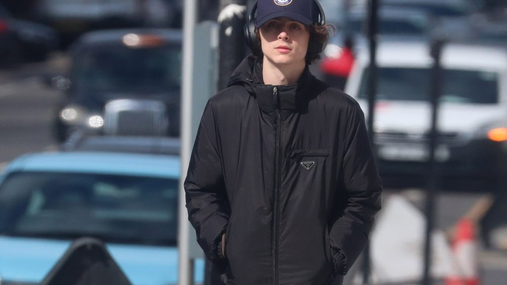 Timothée Chalamet Is Perfectly Attired for Social Distancing