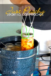 Just Peachy- Canning peaches for beginners
