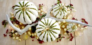 Fancy Farmgirls DIY Moss Pumpkins